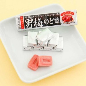 Nobel Umeboshi Plum Candy - Candy Bar